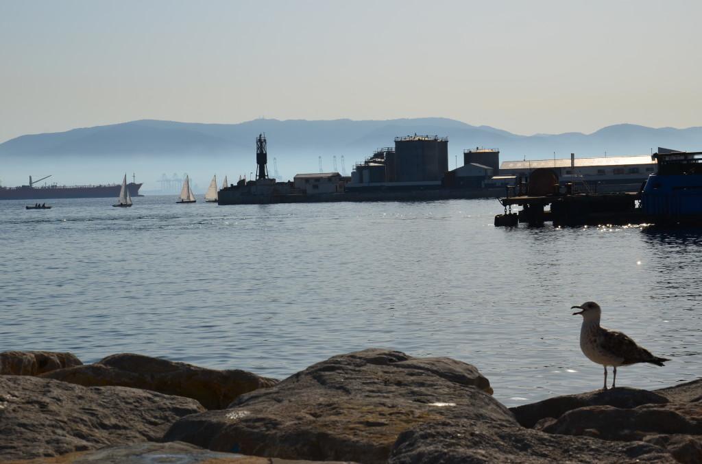 DSC 3892 1024x678 Fotorelacja /12/ Gibraltar