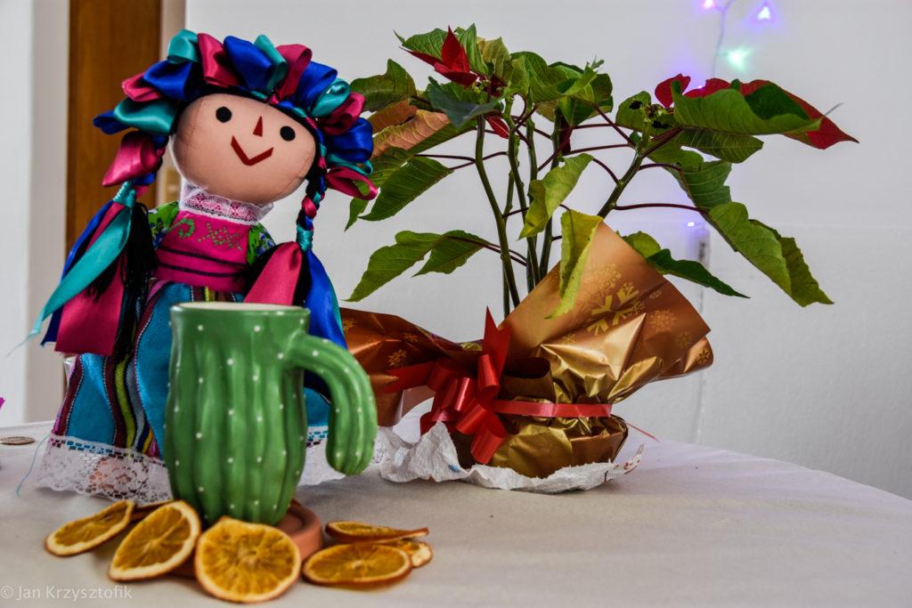 Święta 17 49 of 50 1024x683 Posada, Piñata, Luces de la Habana, Sangrita i prezenty   Święta w CDMX