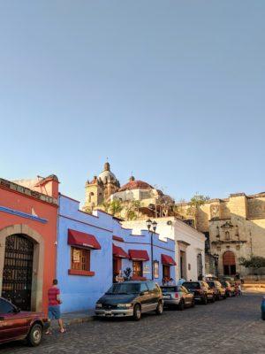 IMG 20190203 165457 01 300x400 Oaxaca!