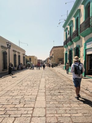 IMG 20190204 120244 01 300x400 Oaxaca!