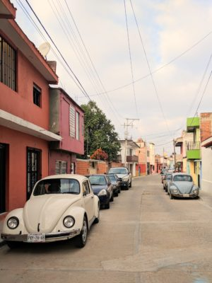 IMG 20190205 080857 01 300x400 Oaxaca!
